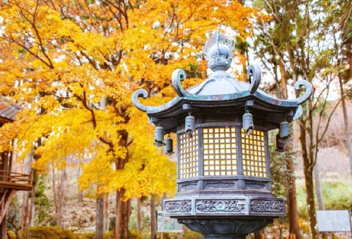 秋天了,这般美景应该不远了